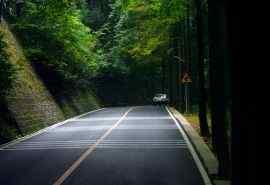 绿色森林公路风景
