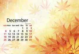 2016年12月日历唯