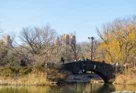 纽约中央公园秋天
