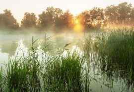 唯美的清晨湖泊风