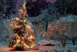 圣诞节创意圣诞树