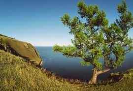 秀丽的西伯利亚风景图片高清壁纸