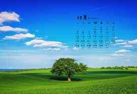 2016年12月日历清新大草原护眼桌面壁纸