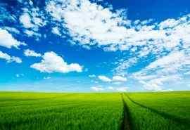 广阔的大草原自然