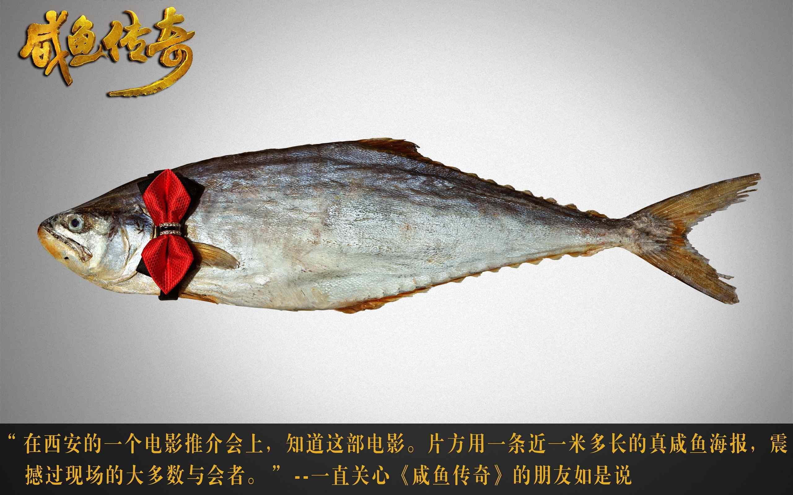 咸鱼传奇剧照图片高清桌面壁纸