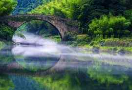 唯美绿色河流风景
