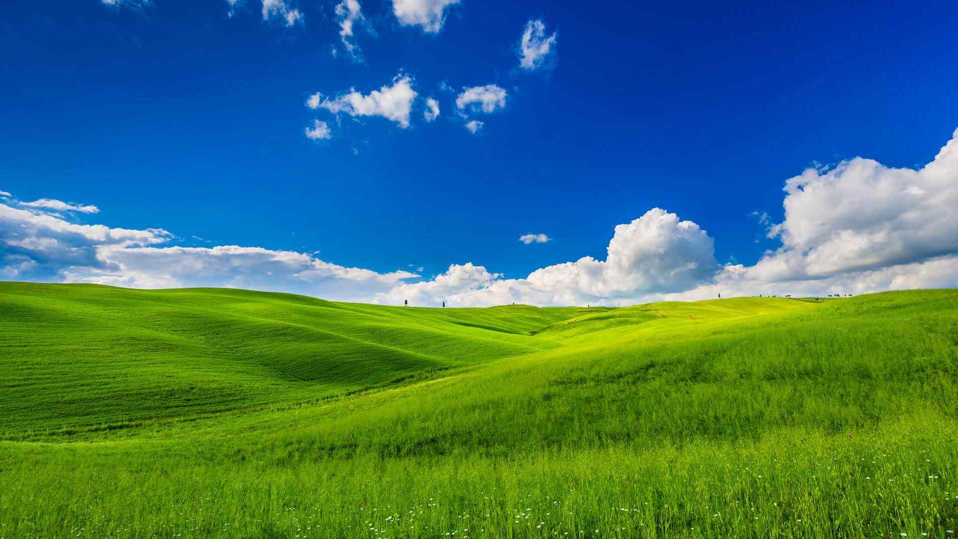一望无际的美丽大草原风景图片