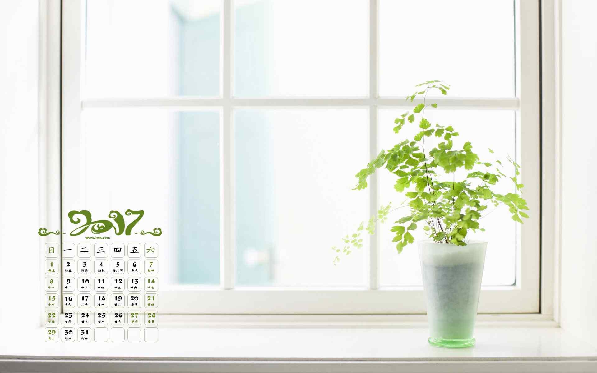 2017年1月日历小清新植物图片高清壁纸