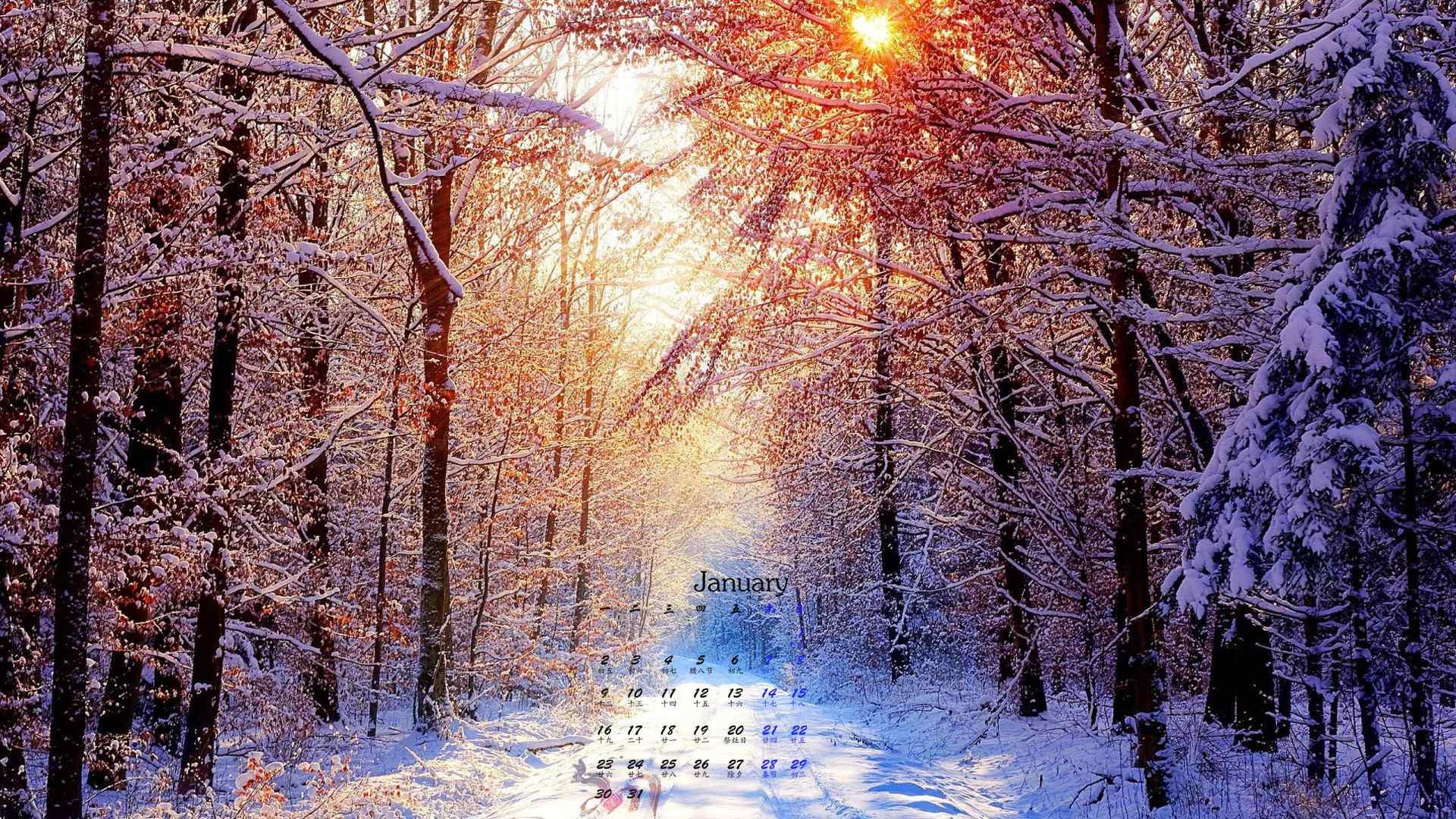 2017年1月日历唯美雪景高清桌面壁纸