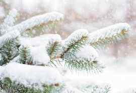 好看的小清新雪景图片高清壁纸