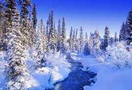 二十四节气大雪节